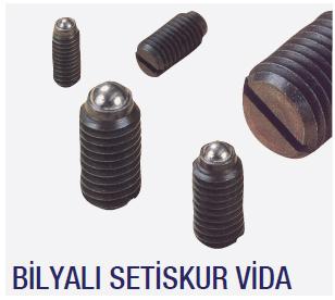 Bilyalı Setskur Vida